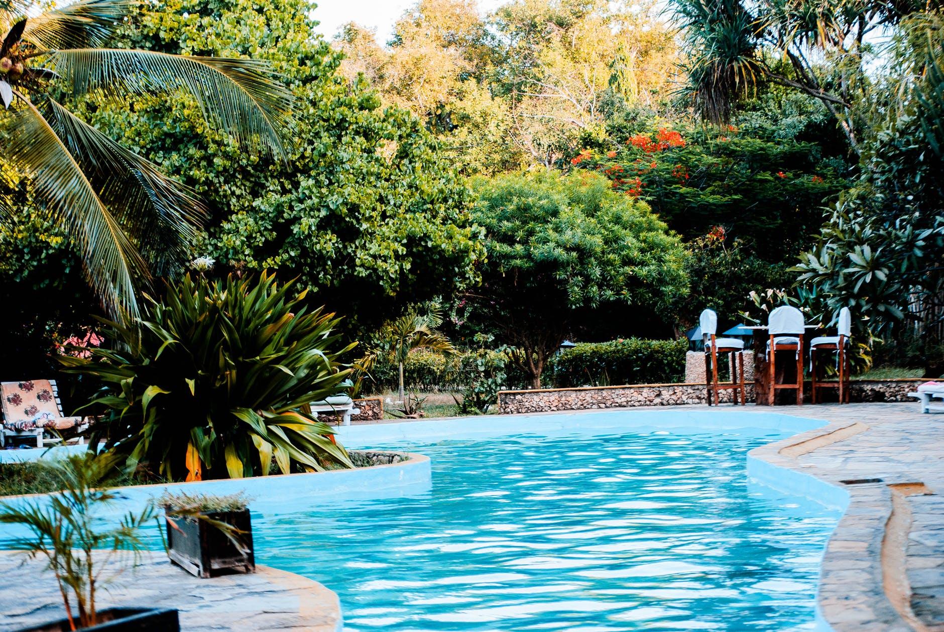 Hoe kan ik mijn tuin een luxe uitstraling geven